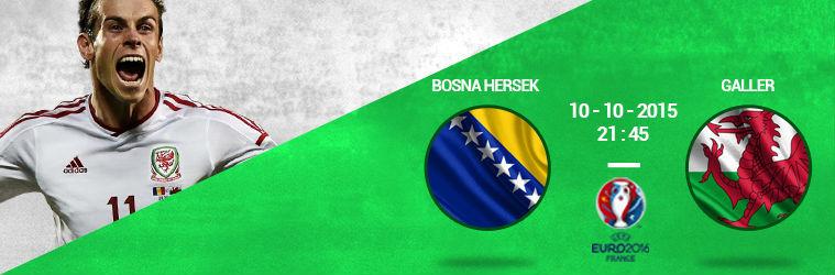 Bosna Hersek - Galler
