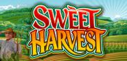 Sweet-harvest